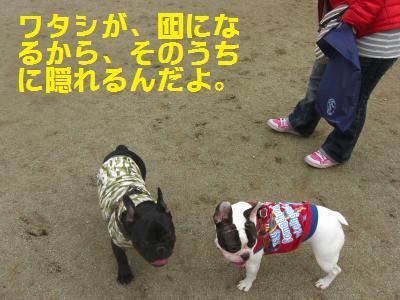 8_20100408004457.jpg