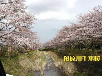 9_20100421231624.jpg