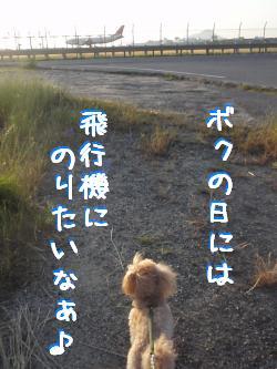20100609-3.jpg