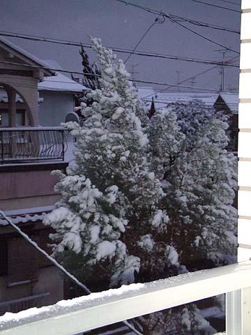 雪の年明け
