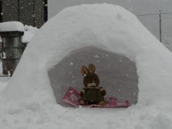 20101231大雪(((p(>◇<)q))) サムイー!!3
