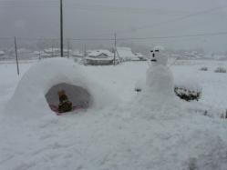 20101231大雪(((p(>◇<)q))) サムイー!!4