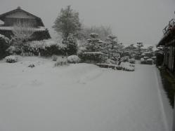 20101231大雪(((p(>◇<)q))) サムイー!!