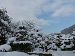 20110101雪景色~♪
