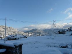 20110107雪~~♪2