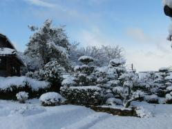 20110110雪景色~♪