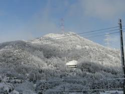 20110110雪景色~♪3