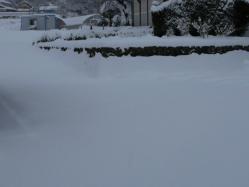 20110116大雪~~♪