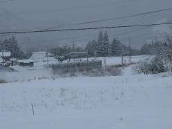 20110116大雪~~♪2