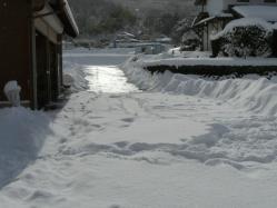 20110116大雪~~♪3