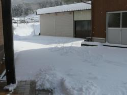 20110116大雪~~♪4
