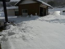 20110116大雪~~♪7