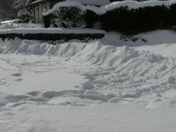 20110116大雪~~♪5