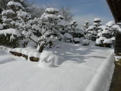 20110116大雪~~♪6