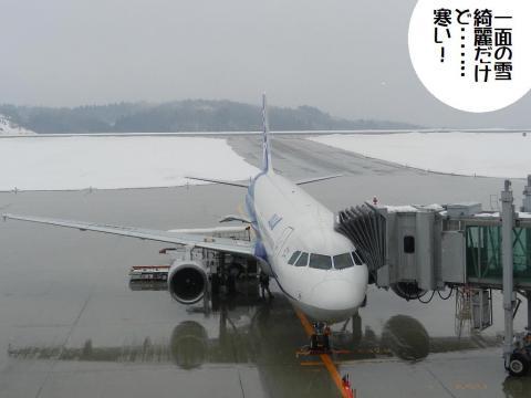 DSCN9479   羽田