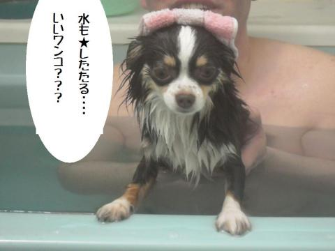 DSCN0051    いい湯