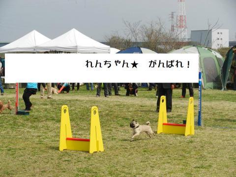 DSCN9615  平塚