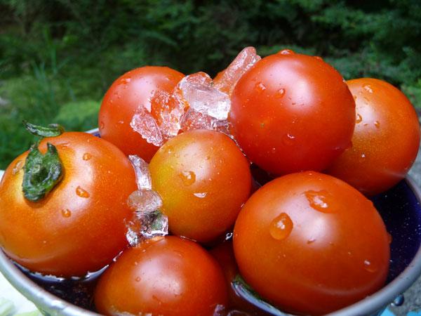 tomato20100725.jpg