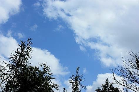 昨日の空♪