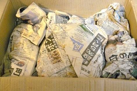 新聞紙保存♪