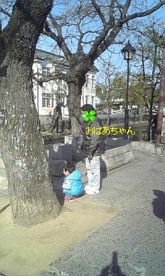 091227_110919_ed.jpg