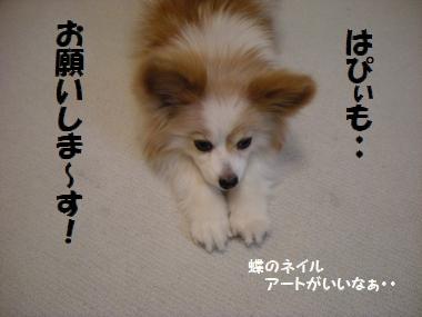 001_20110120164309.jpg