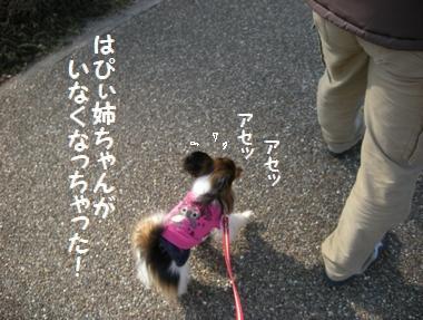 002_20100122144721.jpg
