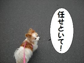 140_20100222222225.jpg