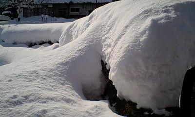 雪ホイップ