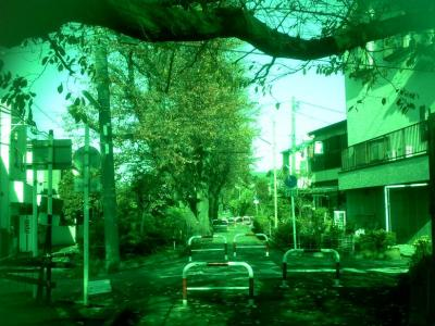 003_20091126132606.jpg