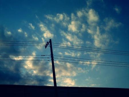 006_20100119171332.jpg