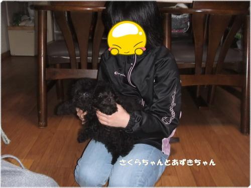 DSCF0496_convert_20130327112639.jpg