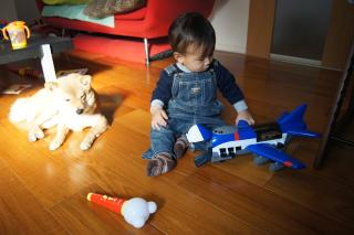 おもちゃうらやま