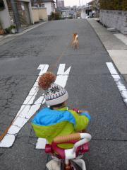 2回目の散歩