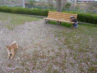 でんわ公園