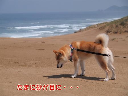 砂が・・・