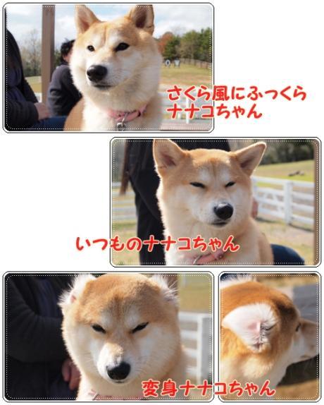 ナナコちゃん七変化