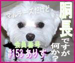 駄犬ぐっちゃん賢犬カレン-胴長同盟#153