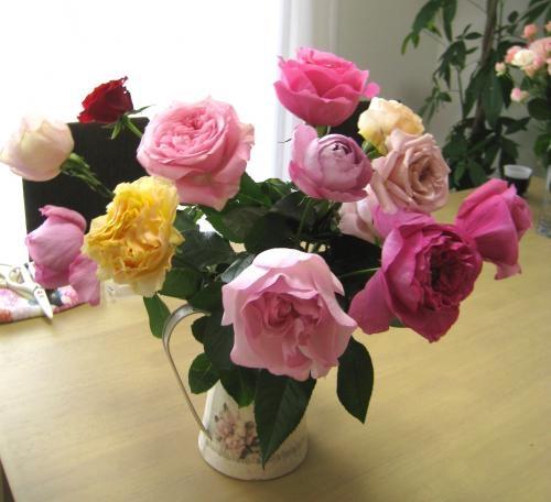 香りのバラ小