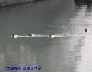 舞鶴基地掃海艇桟橋と遊覧船乗り場 8