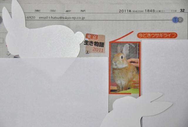 110104newspaper2.jpg
