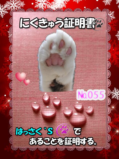 ha_nikusho.jpg