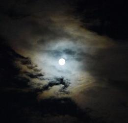 トリミング月