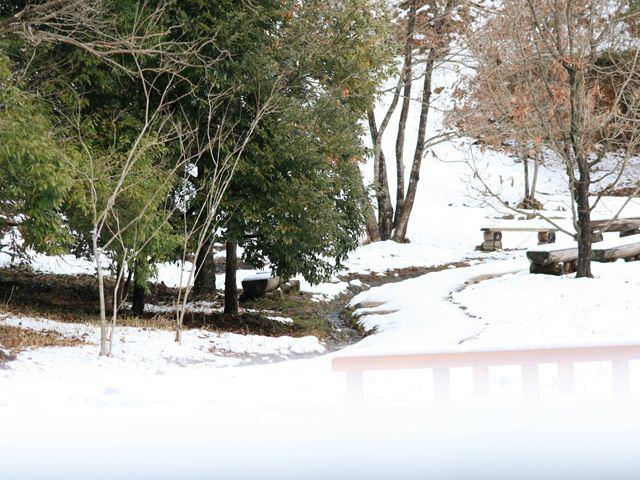 雪の保護センター0140_R