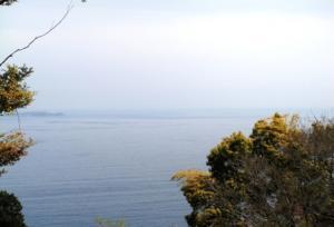 海を見下ろす
