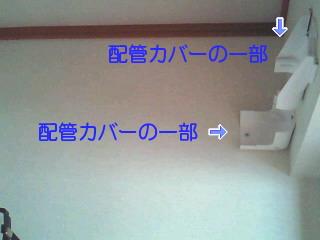 KK-AC252151148.jpg