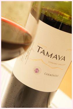 ワイン ピーニャカサタマヤ カルメネール