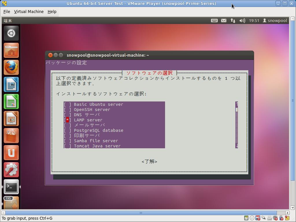 Screenshot-Ubuntu 64-bit Server Test - VMware Player