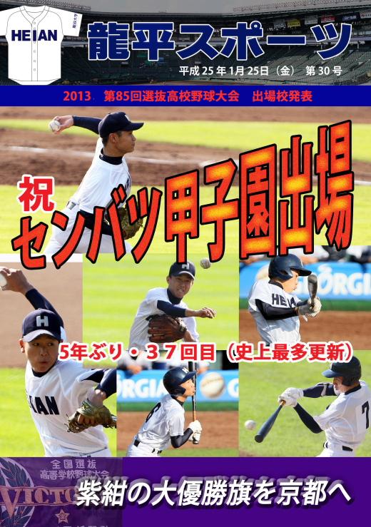 龍平スポーツ30号 2013-1-25