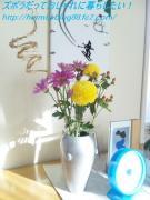 リビングの花